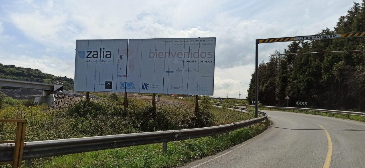 zalia cartel asturias