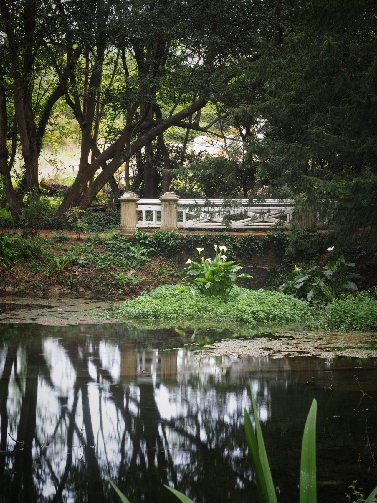 Jardín Botánico Gijón A. Damián Fernández